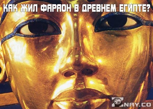 Как жил фараон в Древнем Египте