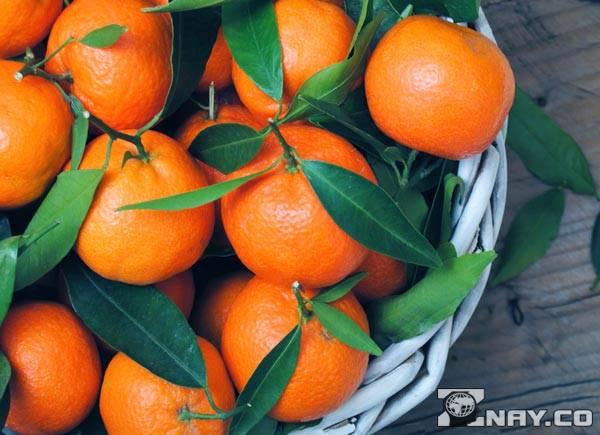 Спелые мандарины: тарелка
