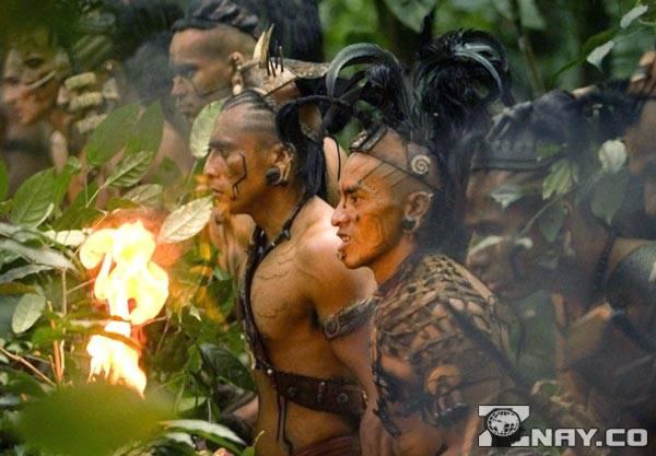 Пробираются сквозь джунгли