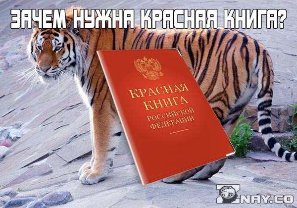 Зачем нужна Красная книга - назначение