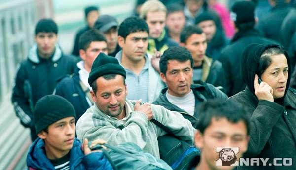 Мигранты переезжают в теплые страны