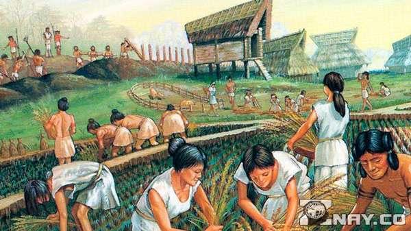 Предки обрабатывают землю