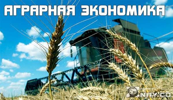 Аграрная экономика и ее преимущества
