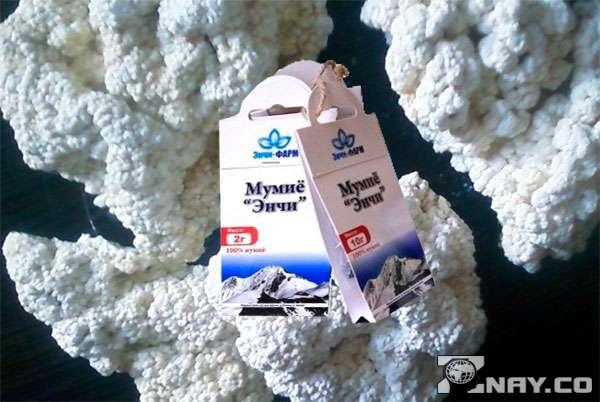 Белое мумиё - средство