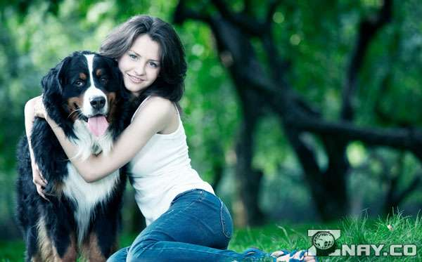 Выпросила взрослого пса у родных