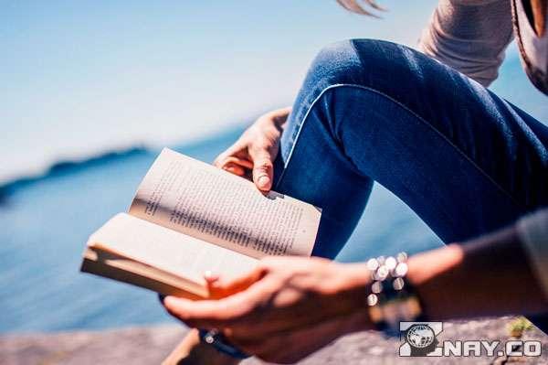 Место для чтения книги про жизнь