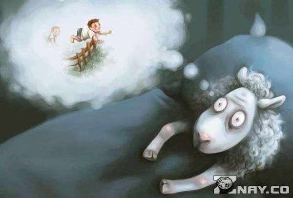 Овца считает людей