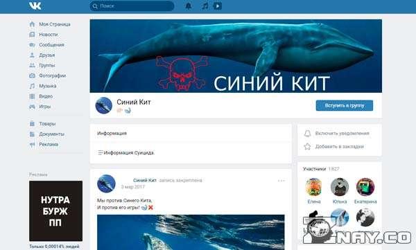 Опасная группа ВК - синий кит