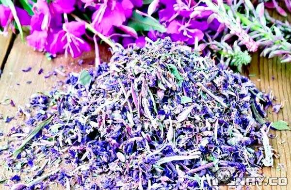 Листья и цветки иван-чая