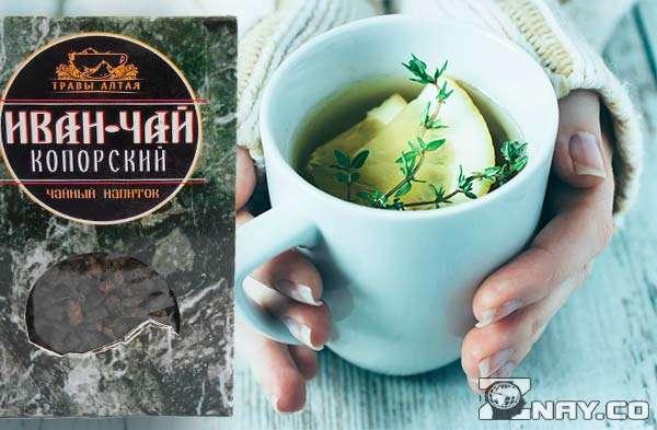 Девушка пьет свежий иван-чай