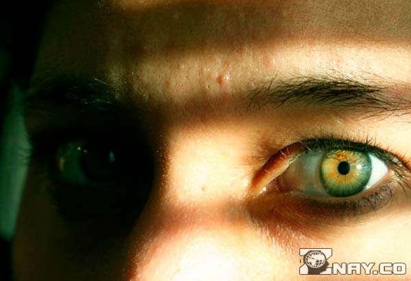 Взгляд зеленоглазого ученого
