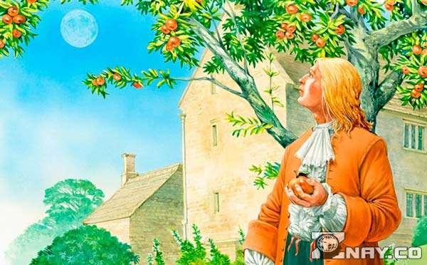 История про Ньютона и яблоко - выдумка