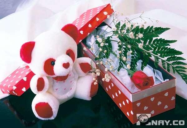Мишка и подарочная коробка