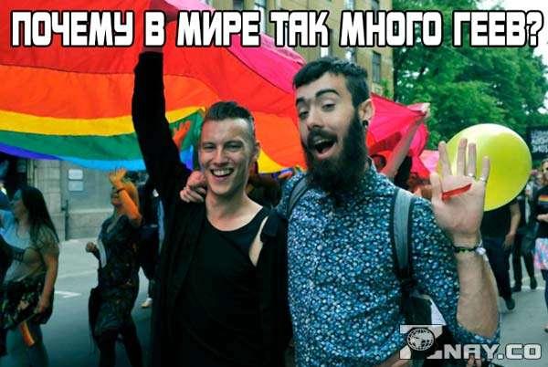 Почему так много геев?