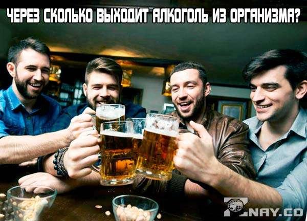 Через сколько выходит алкоголь из организма?