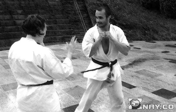 Японское боевое искусство