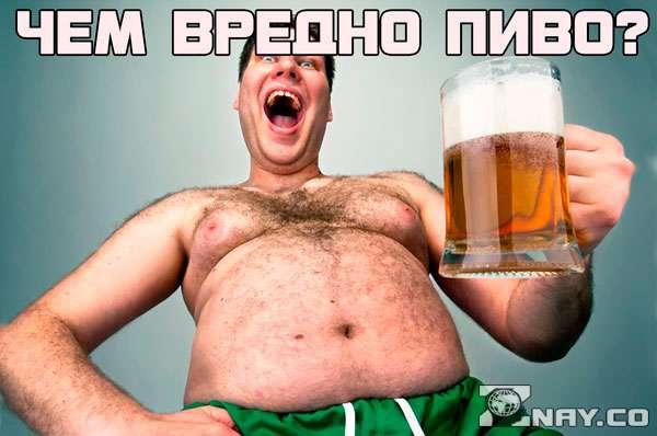 Чем вредно пиво для людей?