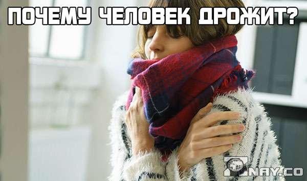 Почему человек дрожит, когда ему очень холодно?