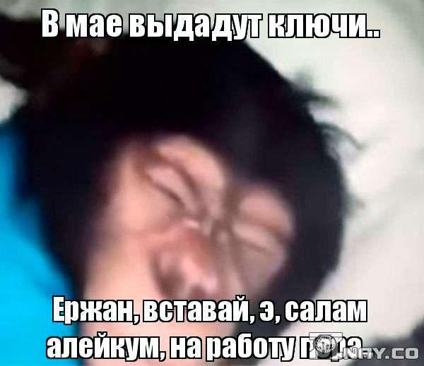 Мем со спящей обезьяной Ержаном