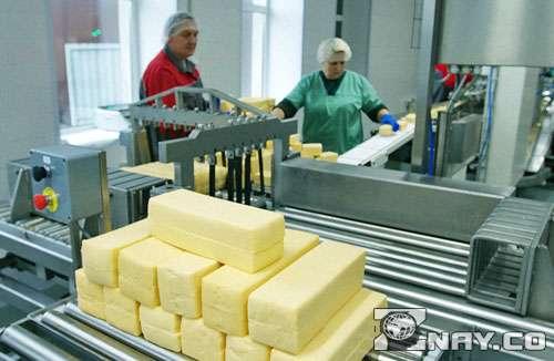 Сырный завод в Ярославской области