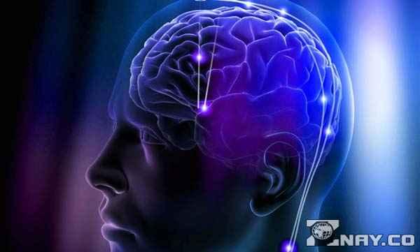 научиться телепатии в домашних условиях