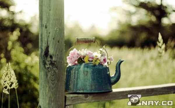 Чайник про весну